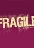 Redakcja czasopisma Fragile