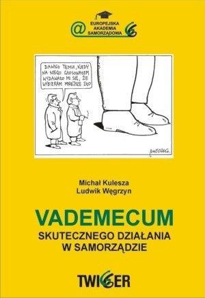 Okładka książki Vademecum skutecznego działania w samorządzie