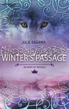 Okładka książki Winter's Passage