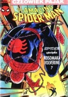 The Amazing Spider-Man 6/1991