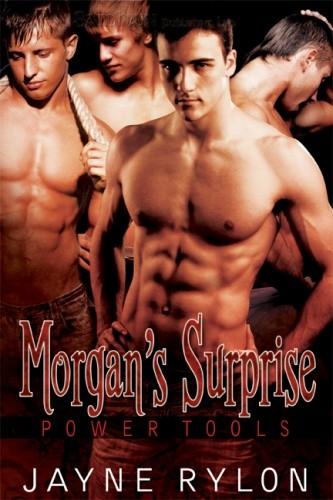 Okładka książki Morgan's Surprise