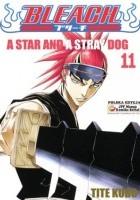 Bleach 11. A Star and a Stray Dog