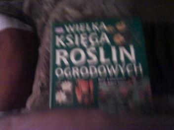 Okładka książki Wielka księga roślin ogrodowych : Byliny