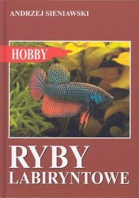 Okładka książki Ryby labiryntowe