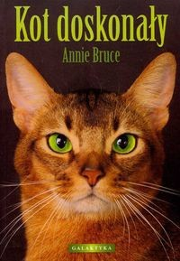 Okładka książki Kot doskonały