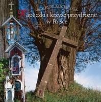 Okładka książki Kapliczki i krzyże przydrożne