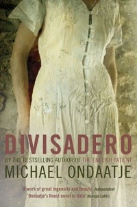 Okładka książki Divisadero