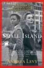 Okładka książki Small island