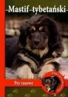 Mastif tybetański. Psy rasowe