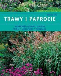 Okładka książki Trawy i paprocie