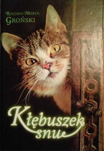 Okładka książki Kłębuszek snu