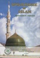 Spojrzenie w islam