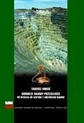 Okładka książki Górnicze skarby przeszłości. Od kruszcu do wyrobu i zabytkowej kopalni.
