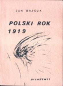 Okładka książki Polski Rok 1919