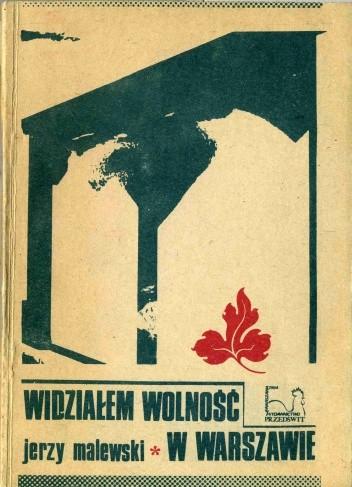 Okładka książki Widziałem wolność w Warszawie