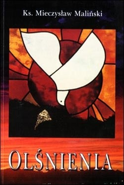 Okładka książki Olśnienia