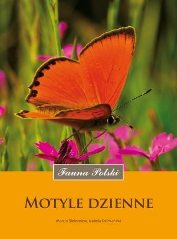 Okładka książki Motyle dzienne