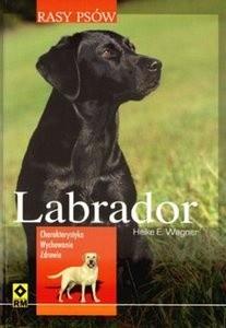 Okładka książki Labrador. Charakterystyka, wychowanie, zdrowie