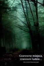 Okładka książki Czarowne miejsca, czarowni ludzie... Zbiór tekstów krasomówczych