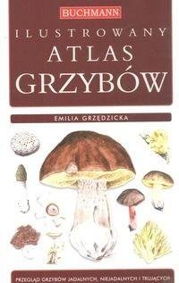 Okładka książki Ilustrowany atlas grzybów