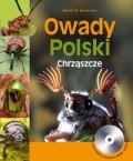 Okładka książki Owady polski chrząszcze