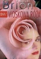 Woskowa róża