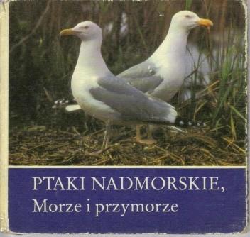 Okładka książki Ptaki nadmorskie. Morze i przymorze