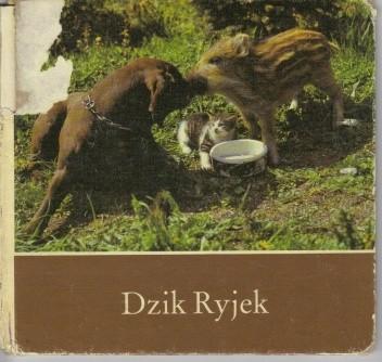 Okładka książki Dzik Ryjek