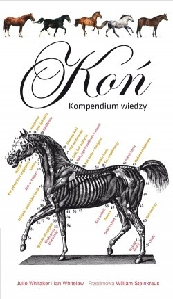 Okładka książki Koń. Kompendium wiedzy