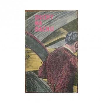 Okładka książki Duchy na dachu. Groteski