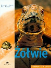 Okładka książki Żółwie zwierzęta w domu