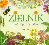 Okładka książki Zielnik. Zioła łąk i ogrodów