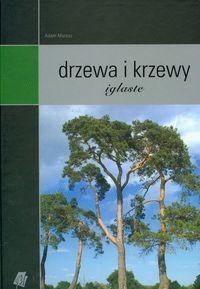 Okładka książki Drzewa i krzewy iglaste