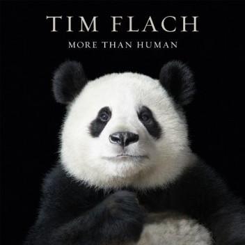 Okładka książki More than Human