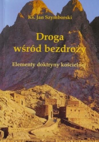 Okładka książki Droga wśród bezdroży. Elementy doktryny kościelnej