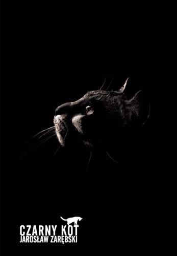 Okładka książki Czarny kot