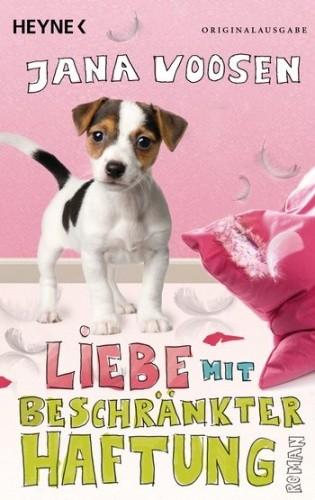 Okładka książki Liebe mit beschränkter Haftung