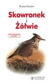 Okładka książki Skowronek i żółwie