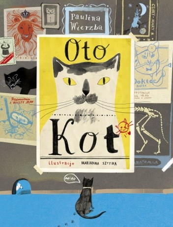 Okładka książki Oto Kot