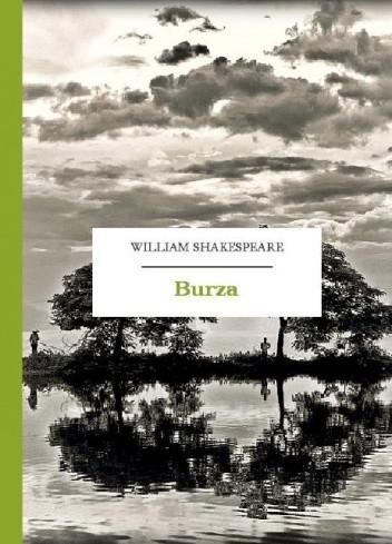 Okładka książki Burza