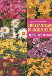 Okładka książki Chryzantemy w ogrodzie i ich bliscy krewni
