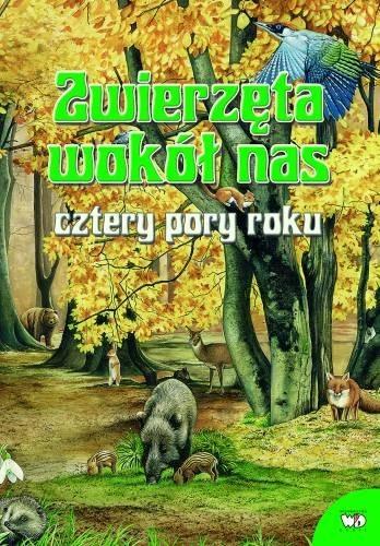 Okładka książki Zwierzęta wokół nas. Cztery pory roku