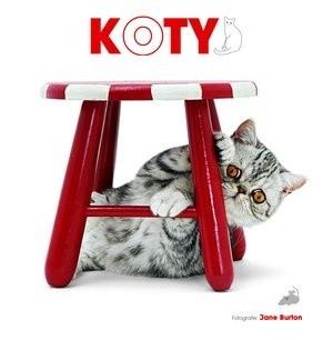 Okładka książki Koty
