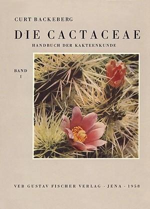 Okładka książki Die Cactaceae Handbuch der Kakteenkunde band 1