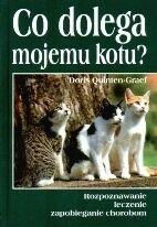 Okładka książki Co dolega mojemu kotu?