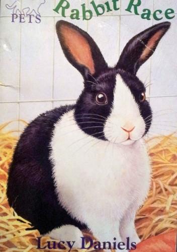 Okładka książki Rabbit race