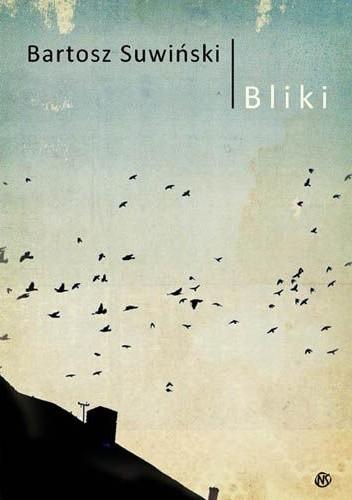 Okładka książki Bliki