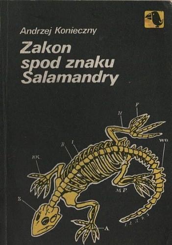 Okładka książki Zakon spod znaku Salamandry