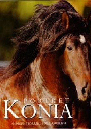 Okładka książki Portret konia
