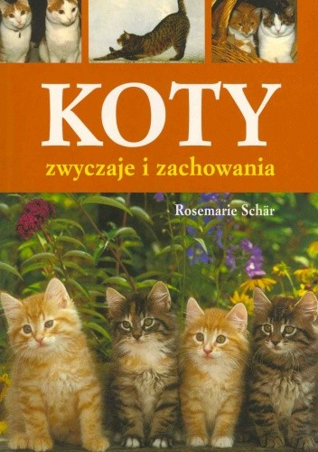 Okładka książki Koty. Zwyczaje i zachowania